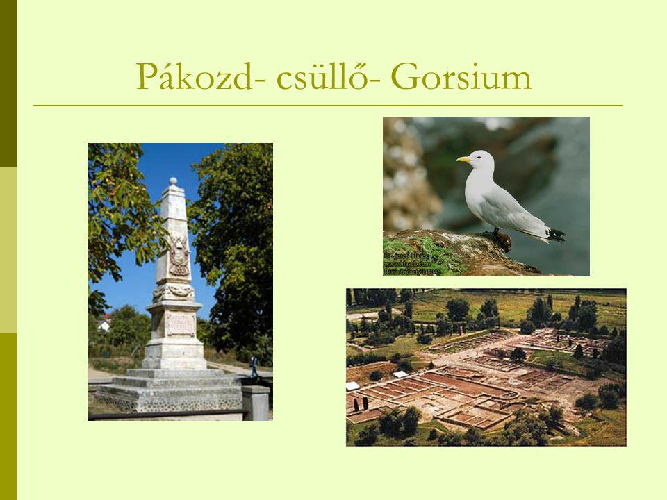 Pákozd- csüllő- Gorsium