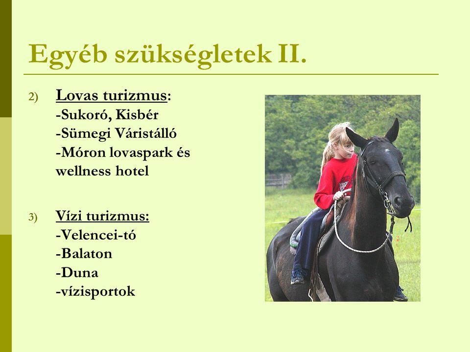 Egyéb szükségletek II. Lovas turizmus: -Sukoró, Kisbér -Sümegi Váristálló -Móron lovaspark és wellness hotel.