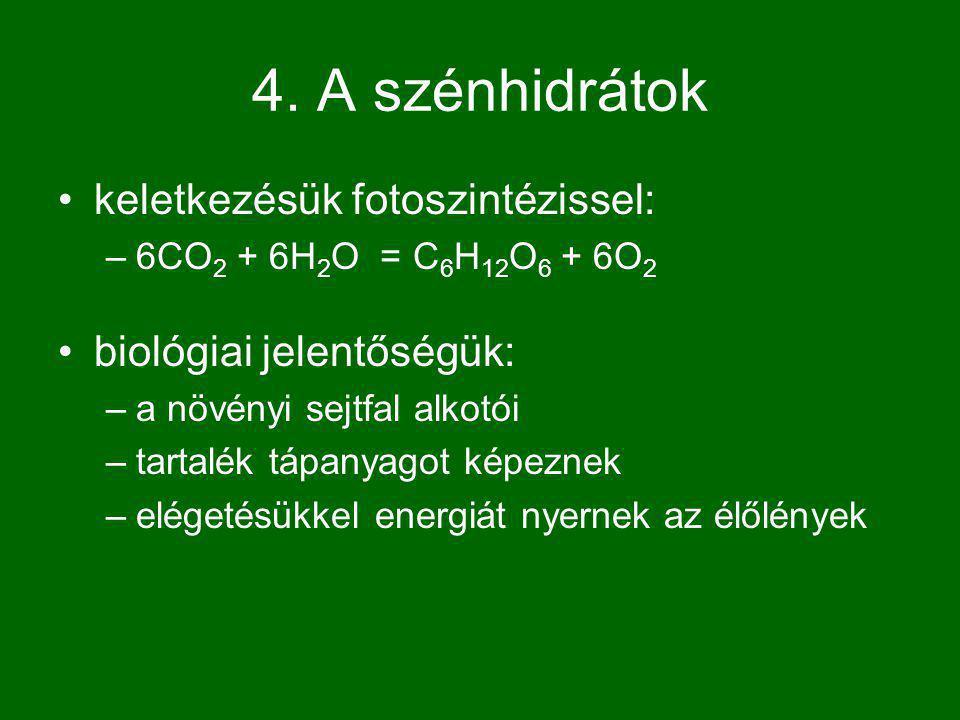 4. A szénhidrátok keletkezésük fotoszintézissel: