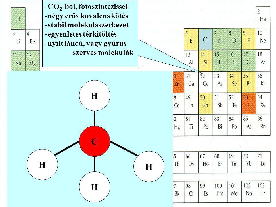 -CO2-ból, fotoszintézissel