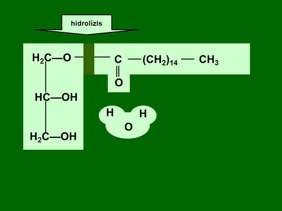 H2C—O HC—OH H2C—OH C (CH2)14 CH3 O H H O
