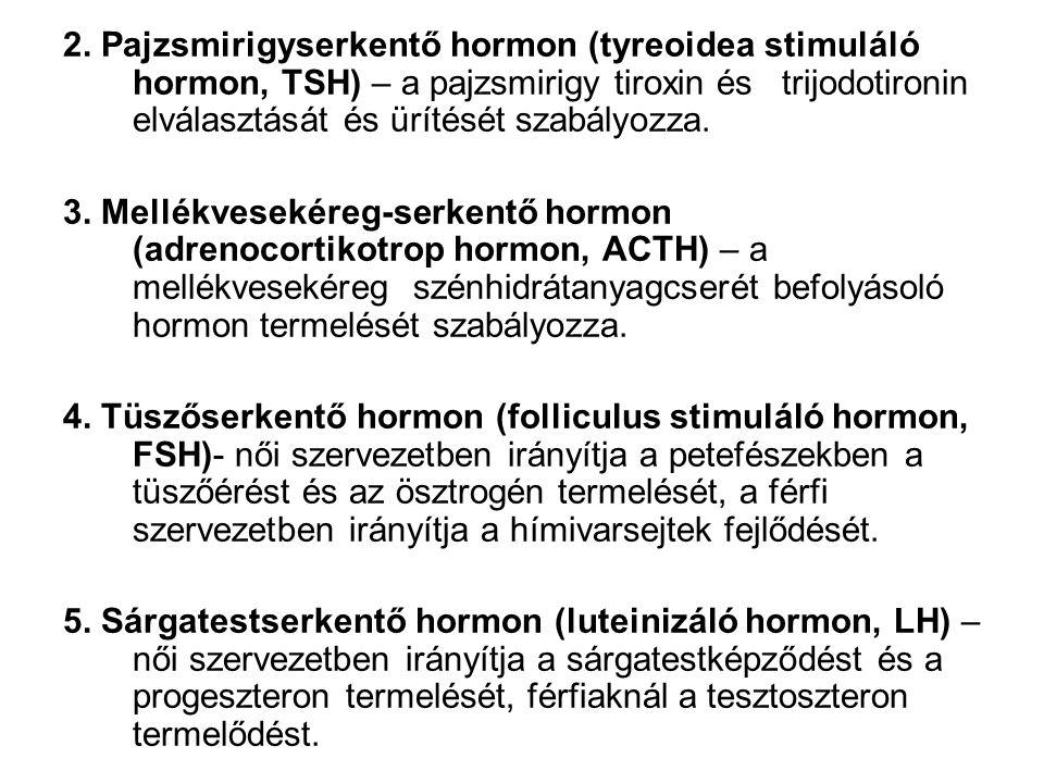 2. Pajzsmirigyserkentő hormon (tyreoidea stimuláló hormon, TSH) – a pajzsmirigy tiroxin és trijodotironin elválasztását és ürítését szabályozza.