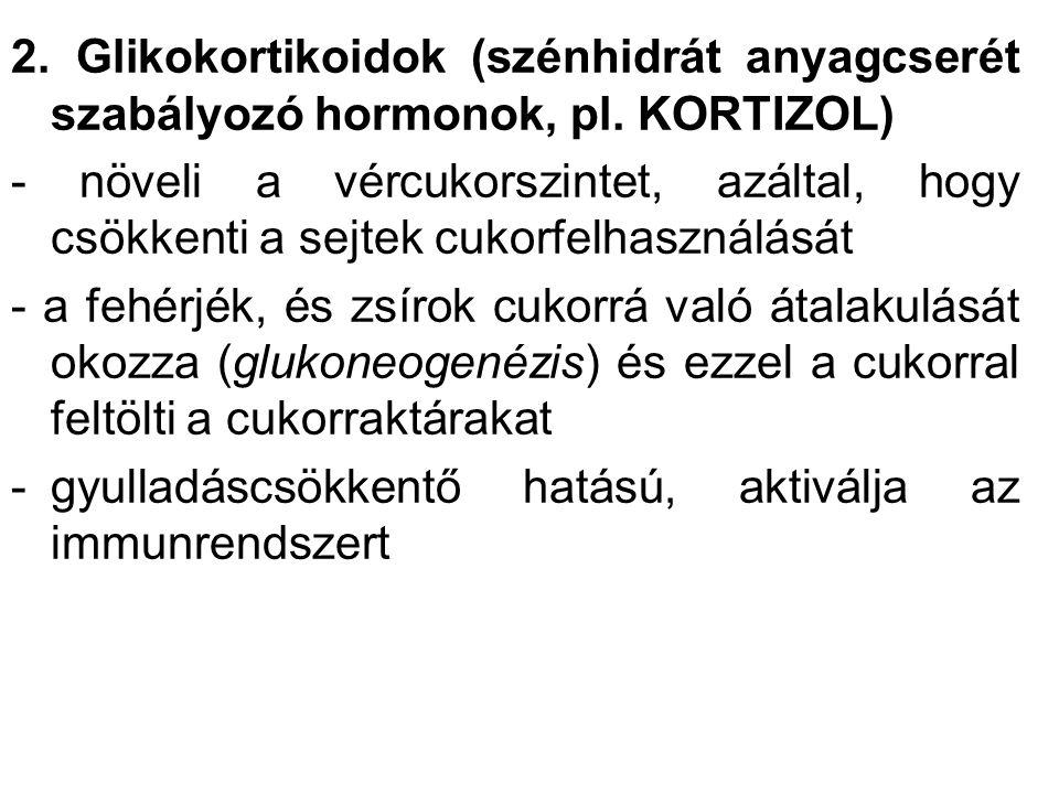 2. Glikokortikoidok (szénhidrát anyagcserét szabályozó hormonok, pl