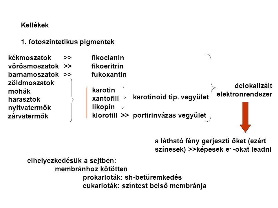 Kellékek 1. fotoszintetikus pigmentek. kékmoszatok >> fikocianin. vörösmoszatok >> fikoeritrin.
