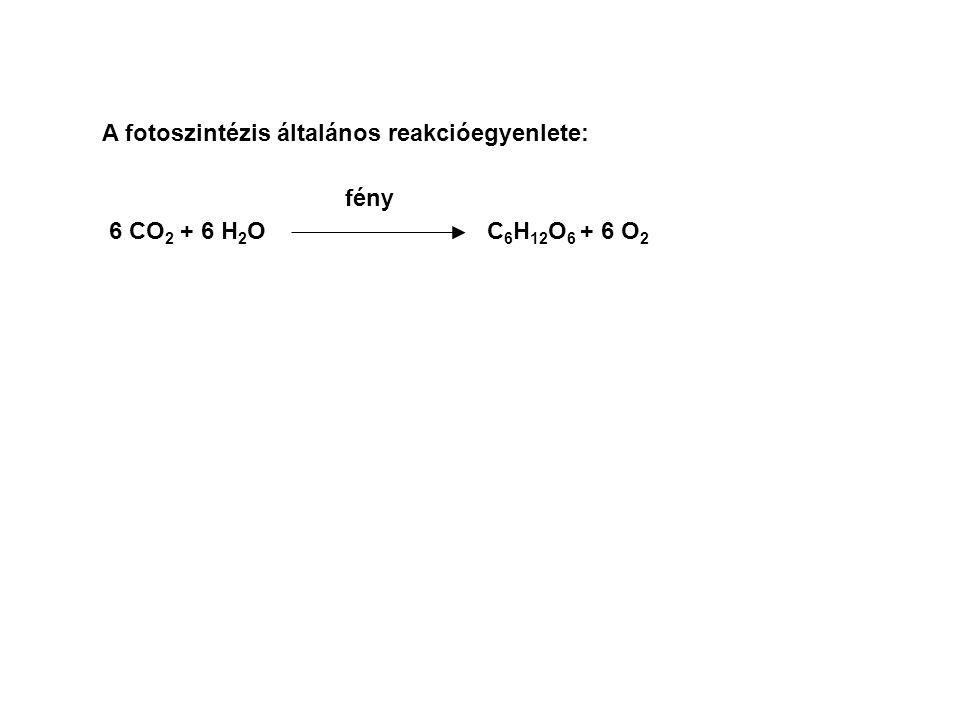 A fotoszintézis általános reakcióegyenlete:
