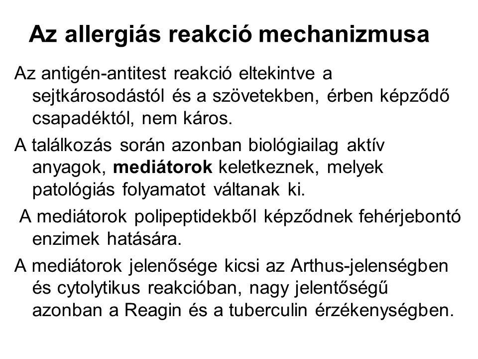 Az allergiás reakció mechanizmusa