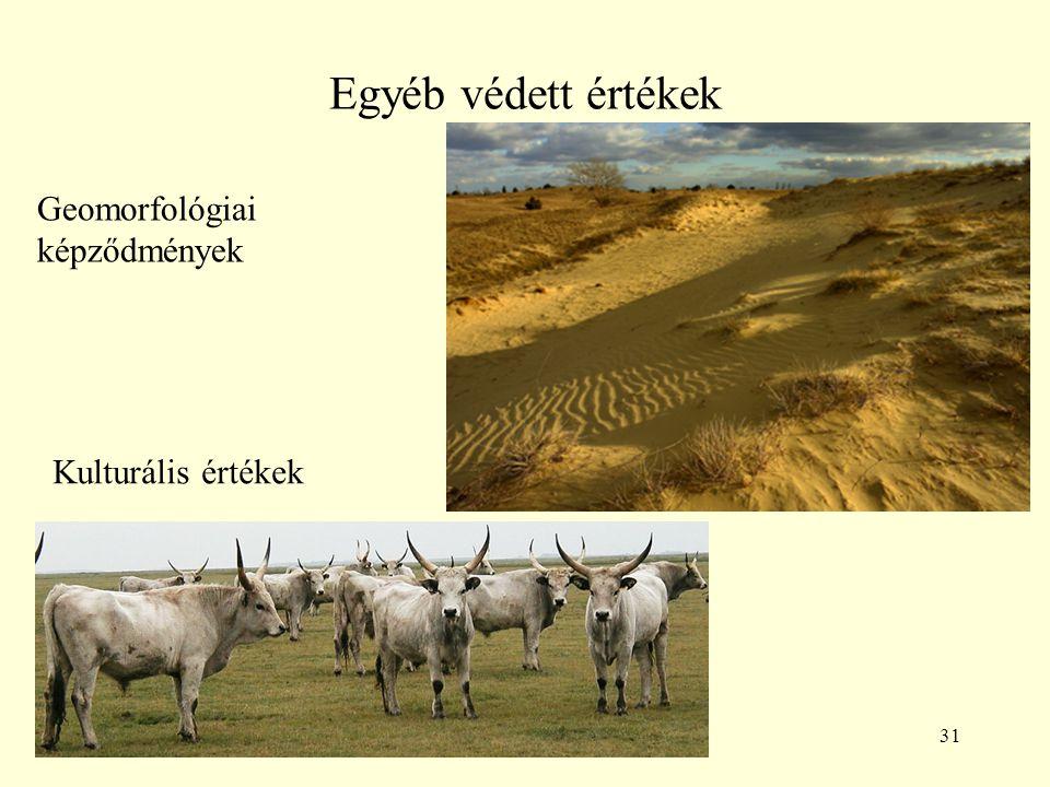 Egyéb védett értékek Geomorfológiai képződmények Kulturális értékek