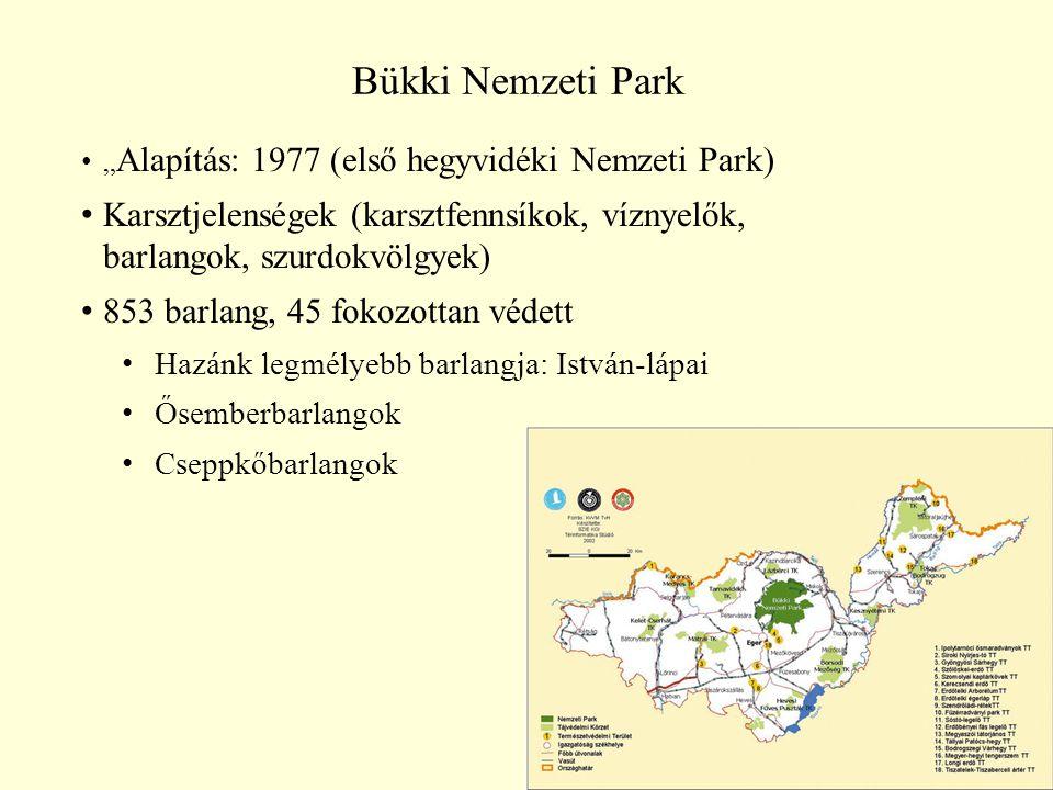 """Bükki Nemzeti Park """"Alapítás: 1977 (első hegyvidéki Nemzeti Park) Karsztjelenségek (karsztfennsíkok, víznyelők, barlangok, szurdokvölgyek)"""