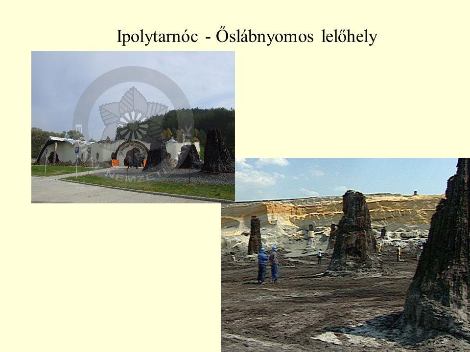 Ipolytarnóc - Őslábnyomos lelőhely