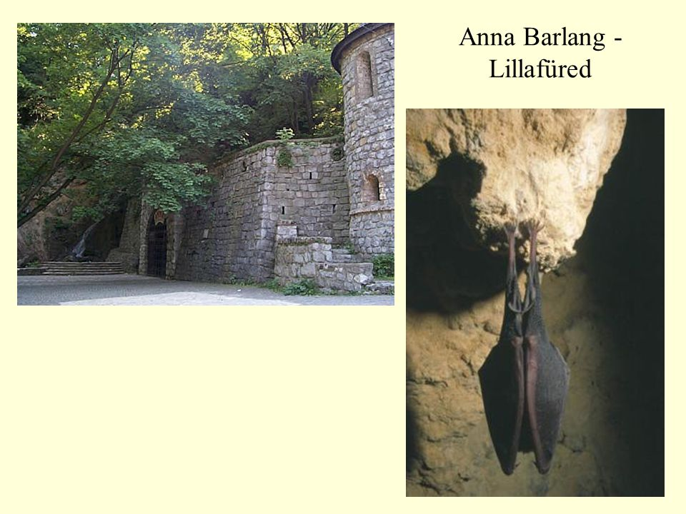 Anna Barlang - Lillafüred
