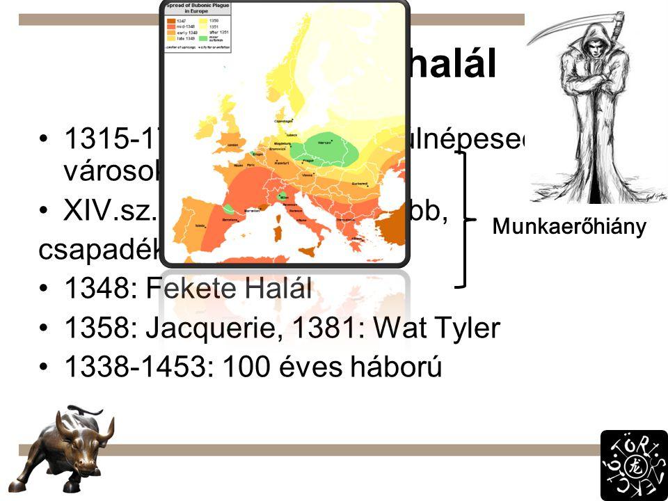 Szenvedés, halál 1315-17: Nagy Éhínség: túlnépesedett városok