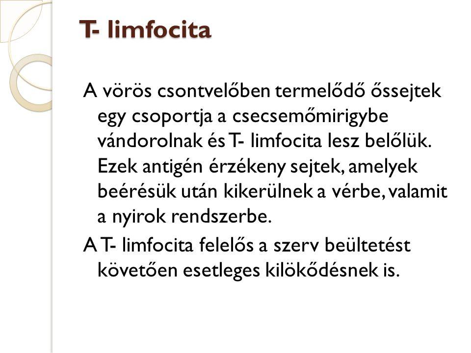 T- limfocita