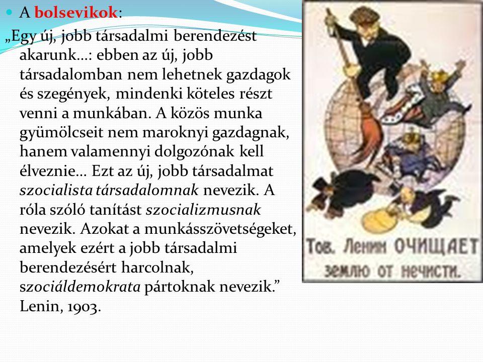 A bolsevikok: