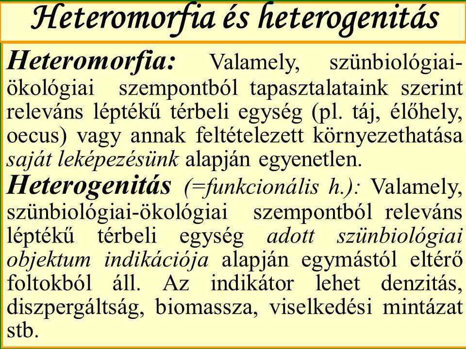 Heteromorfia és heterogenitás