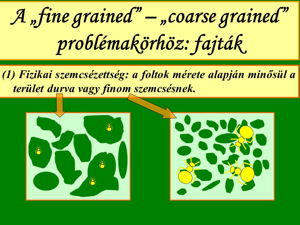 "A ""fine grained – ""coarse grained problémakörhöz: fajták"