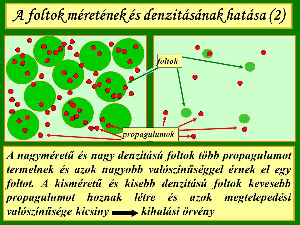 A foltok méretének és denzitásának hatása (2)