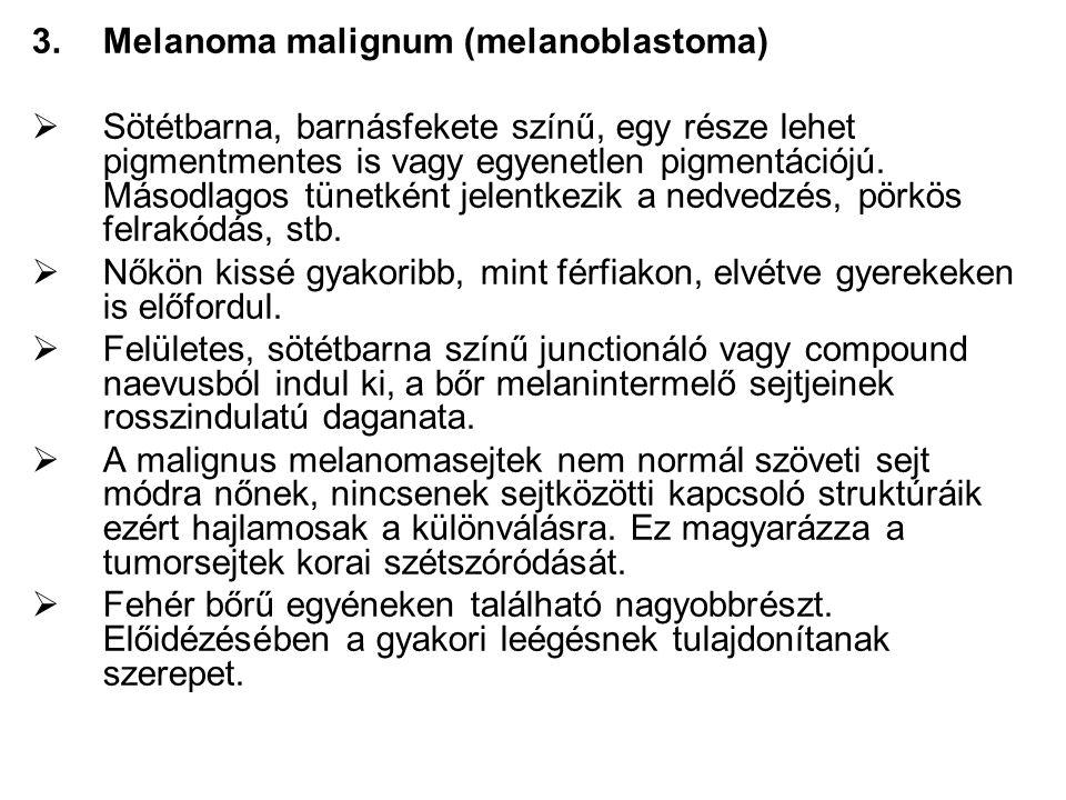 Melanoma malignum (melanoblastoma)