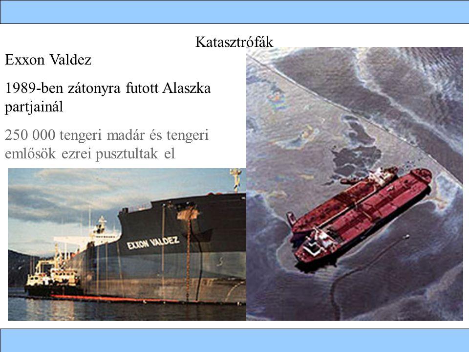 Katasztrófák Exxon Valdez. 1989-ben zátonyra futott Alaszka partjainál.