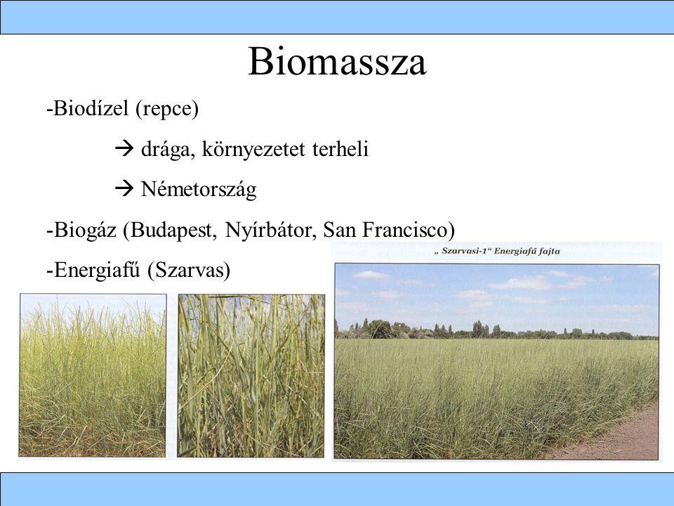 Biomassza -Biodízel (repce)  drága, környezetet terheli  Németország