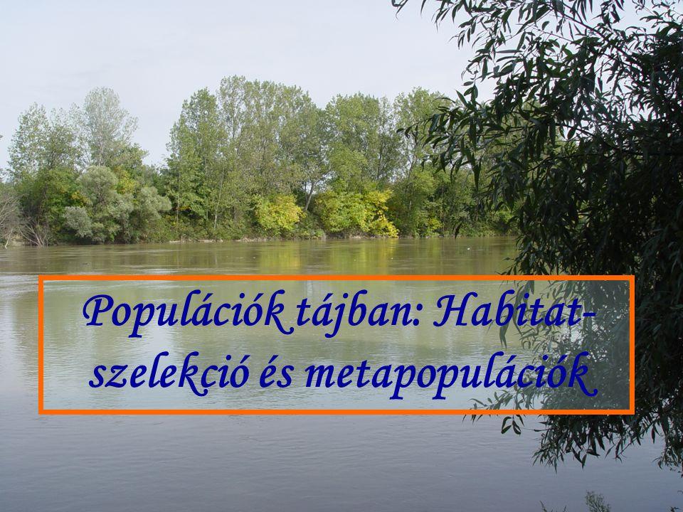 Populációk tájban: Habitat-szelekció és metapopulációk
