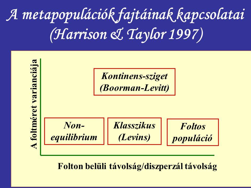 A metapopulációk fajtáinak kapcsolatai (Harrison & Taylor 1997)