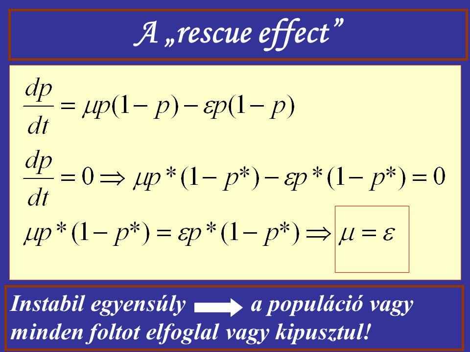 """A """"rescue effect Instabil egyensúly a populáció vagy minden foltot elfoglal vagy kipusztul!"""