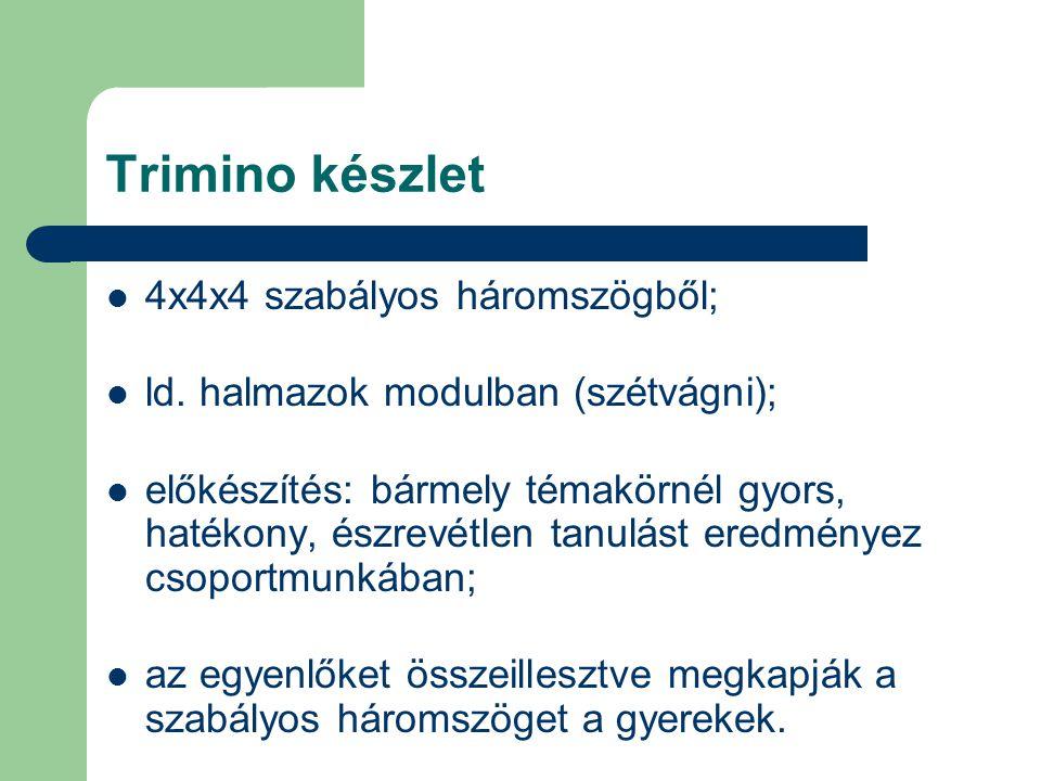 Trimino készlet 4x4x4 szabályos háromszögből;