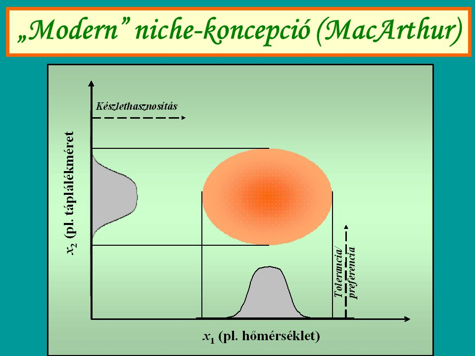 """Modern niche-koncepció (MacArthur)"