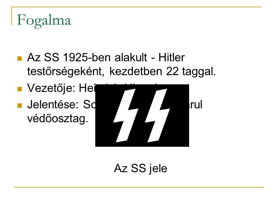 Fogalma Az SS 1925-ben alakult - Hitler testőrségeként, kezdetben 22 taggal. Vezetője: Heinrich Himmler.