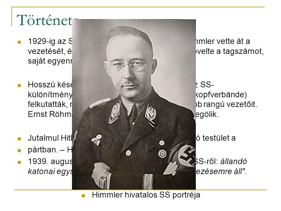 Himmler hivatalos SS portréja