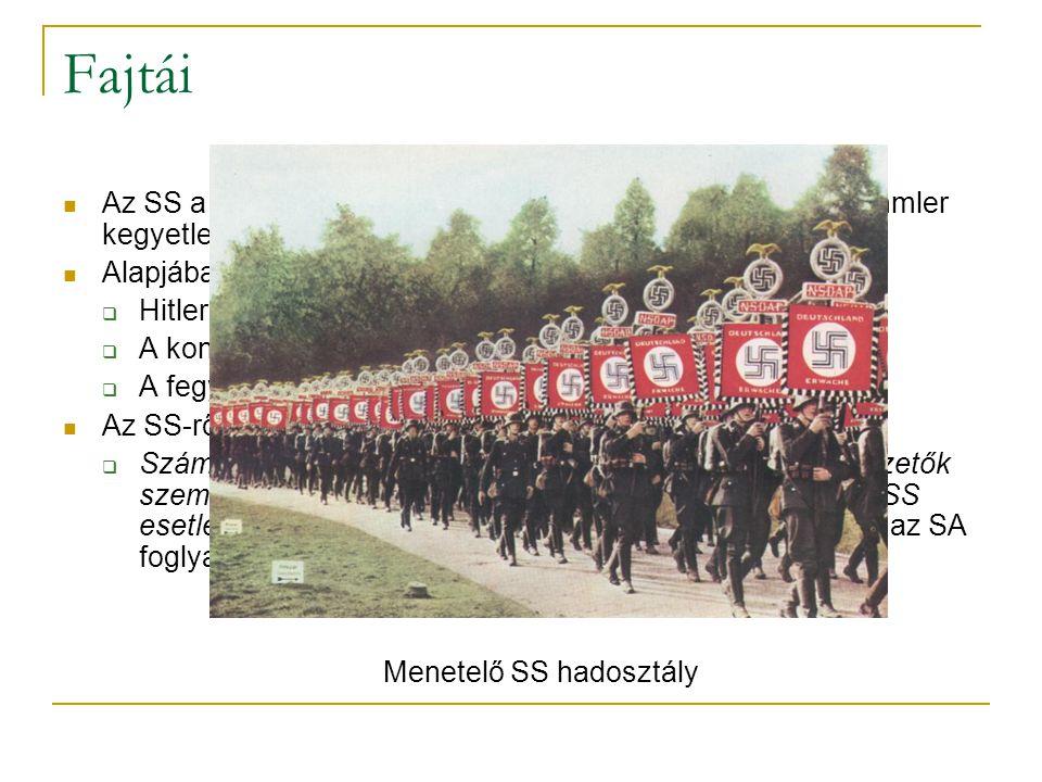 Menetelő SS hadosztály