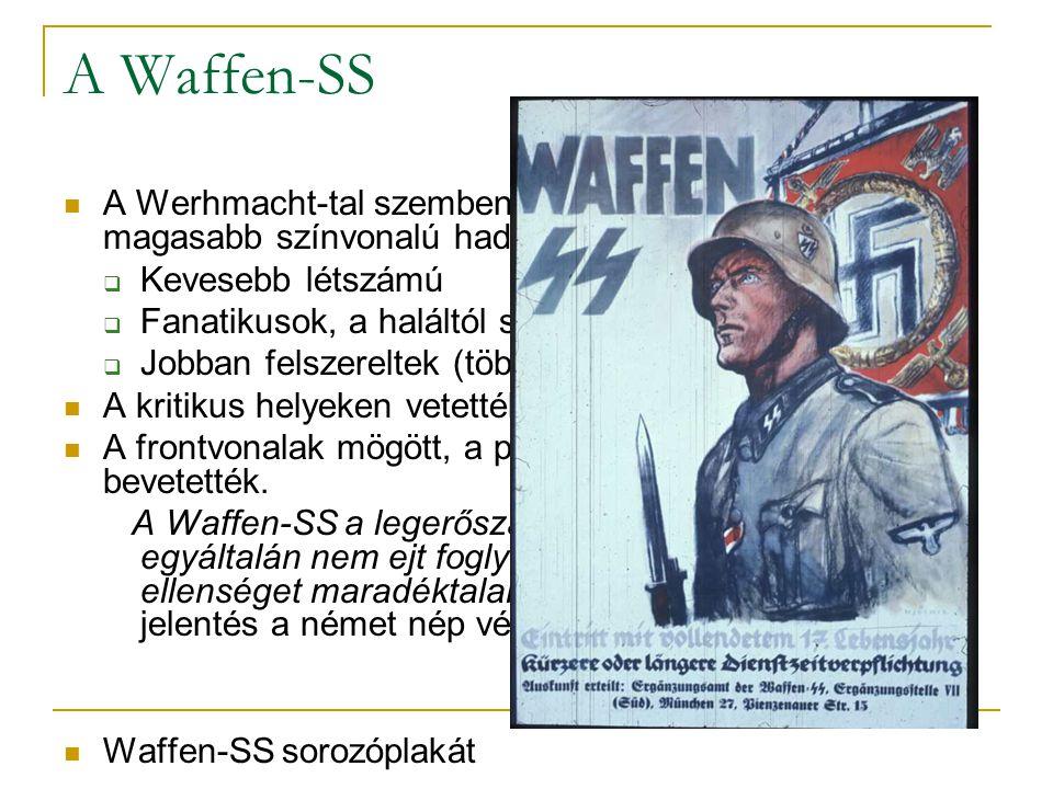 A Waffen-SS A Werhmacht-tal szemben jóval kisebb, de sokkal magasabb színvonalú hadosztályok. Kevesebb létszámú.