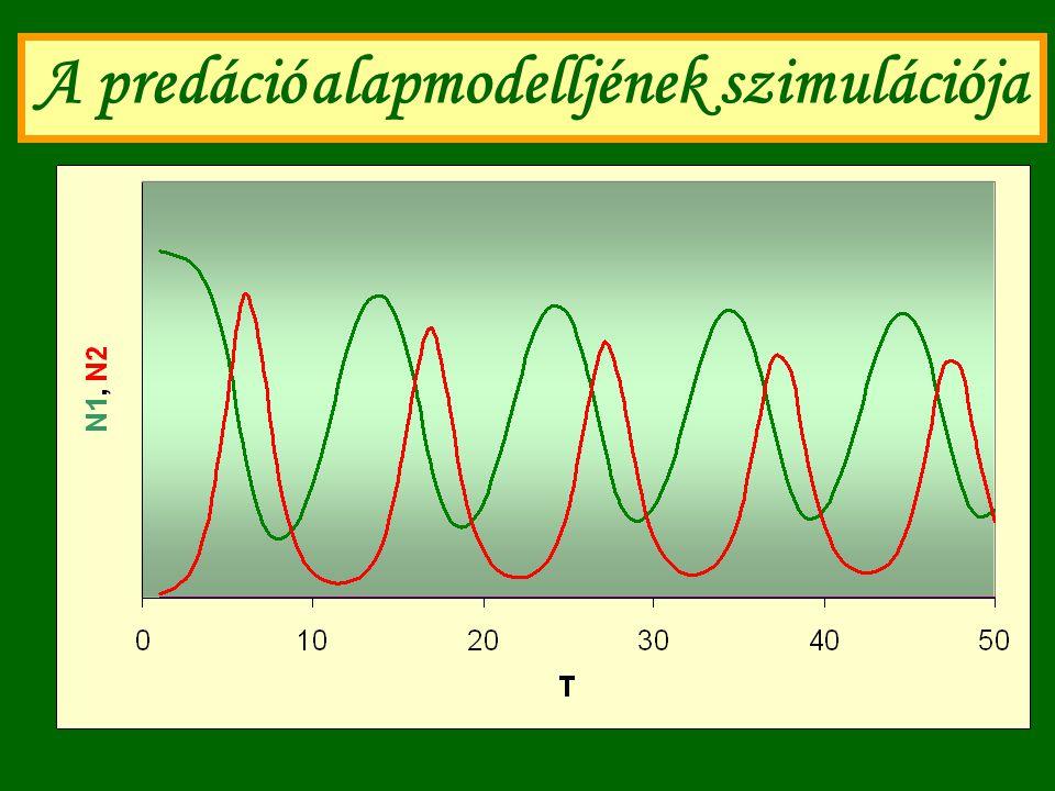 A predáció alapmodelljének szimulációja