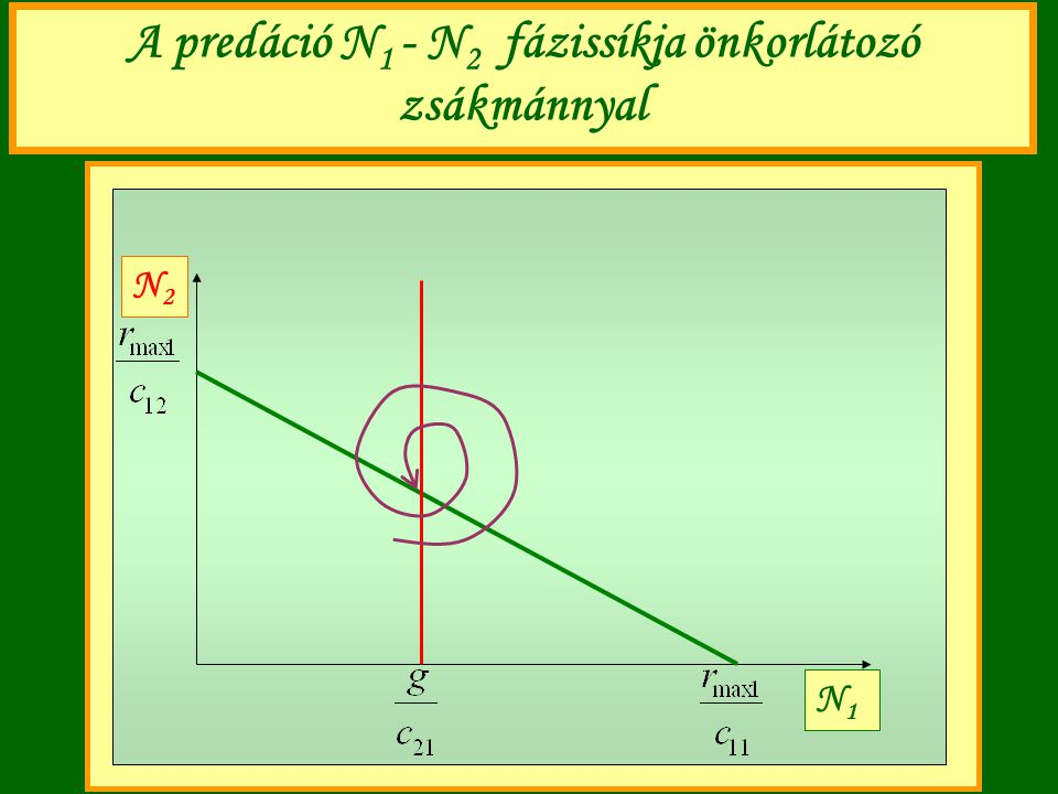 A predáció N1 - N2 fázissíkja önkorlátozó zsákmánnyal