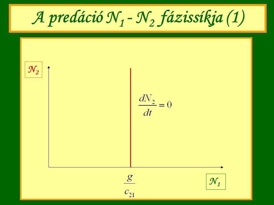 A predáció N1 - N2 fázissíkja (1)