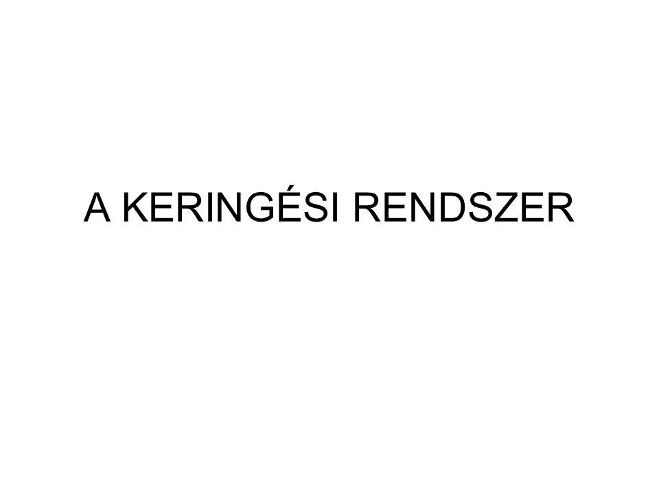 A KERINGÉSI RENDSZER