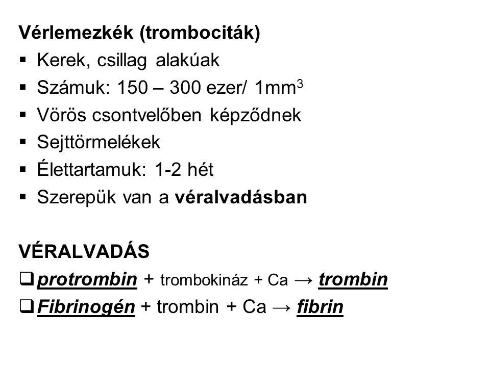 Vérlemezkék (trombociták)