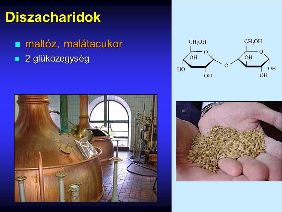 Diszacharidok maltóz, malátacukor 2 glükózegység