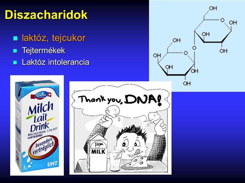 Diszacharidok laktóz, tejcukor Tejtermékek Laktóz intolerancia