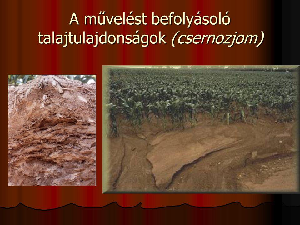 A művelést befolyásoló talajtulajdonságok (csernozjom)
