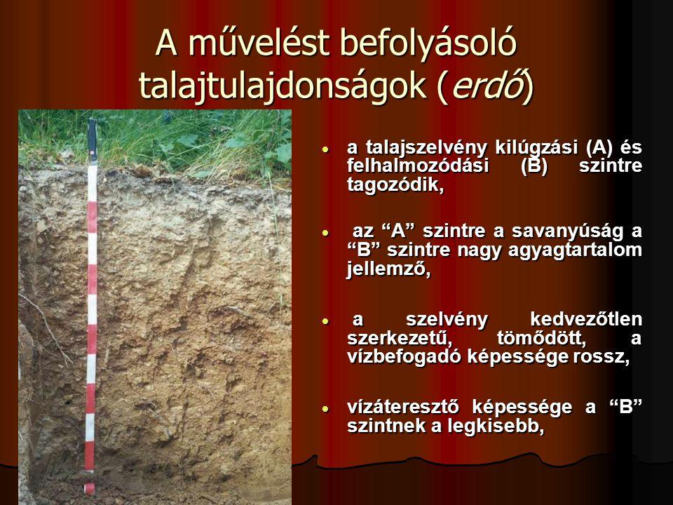A művelést befolyásoló talajtulajdonságok (erdő)