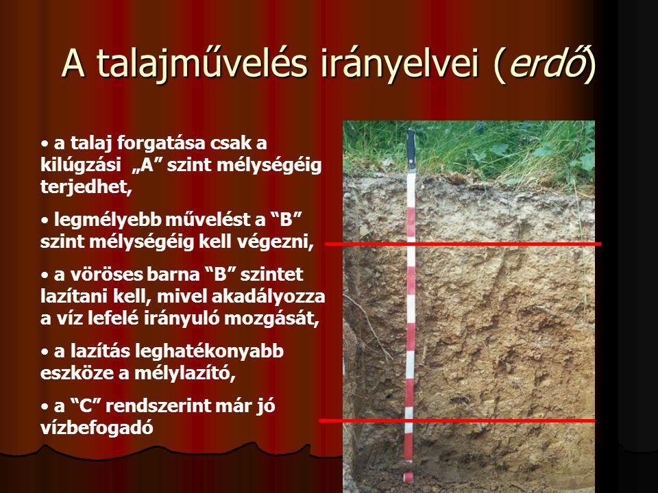 A talajművelés irányelvei (erdő)