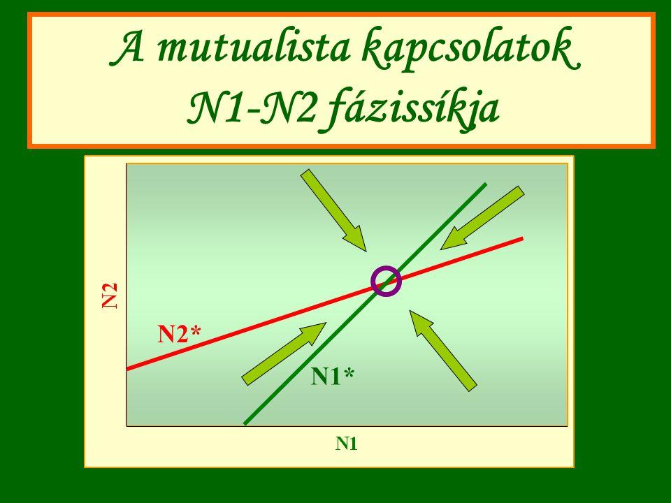 A mutualista kapcsolatok N1-N2 fázissíkja