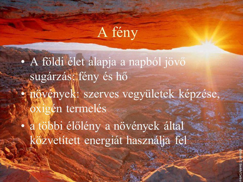 A fény A földi élet alapja a napból jövő sugárzás: fény és hő