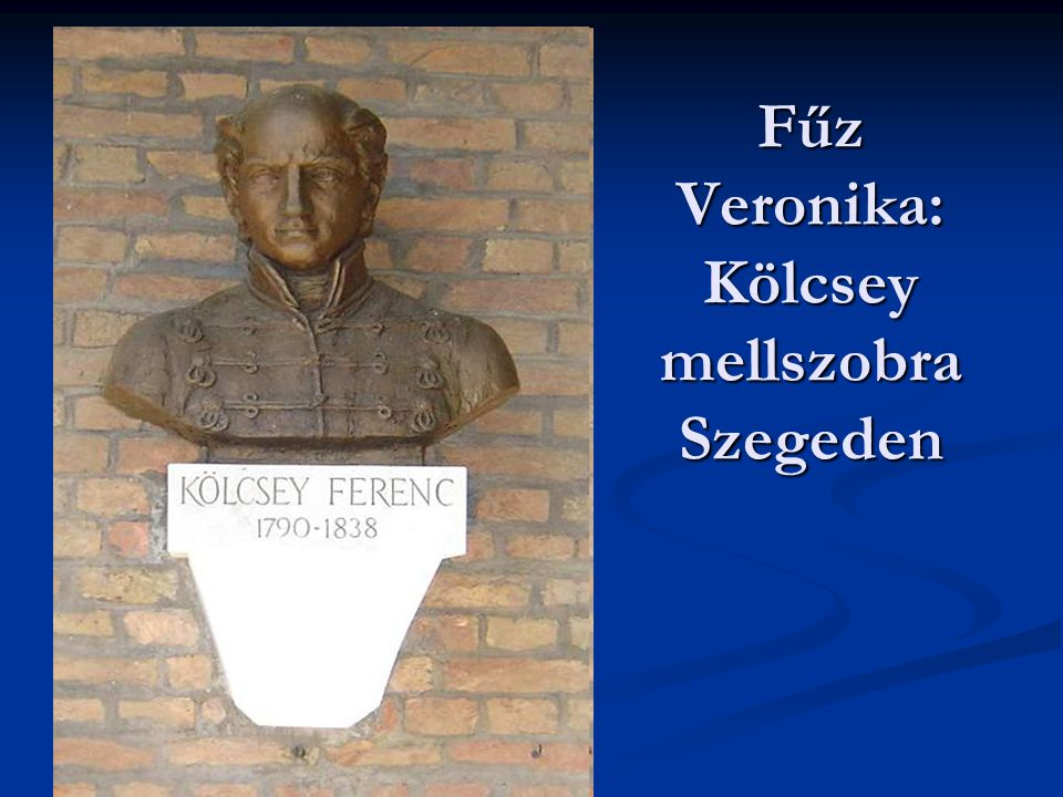 Fűz Veronika: Kölcsey mellszobra Szegeden