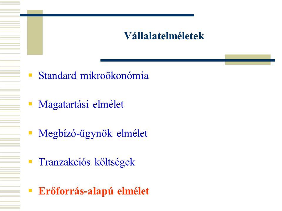 Vállalatelméletek Standard mikroökonómia. Magatartási elmélet. Megbízó-ügynök elmélet. Tranzakciós költségek.