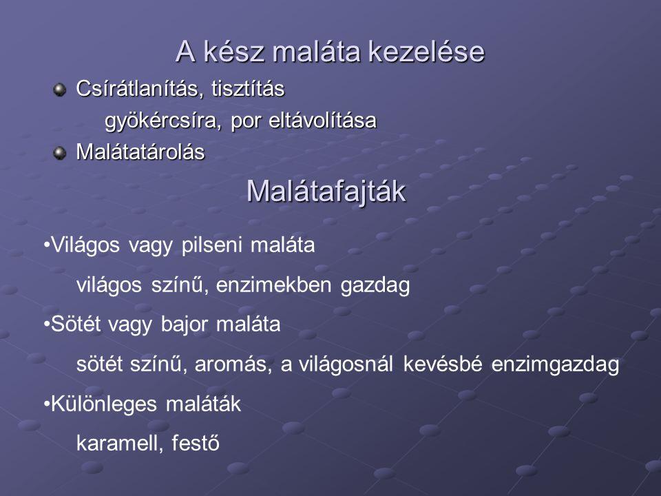 A kész maláta kezelése Malátafajták Csírátlanítás, tisztítás