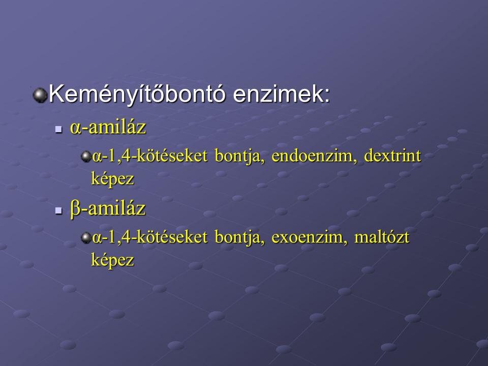 Keményítőbontó enzimek: