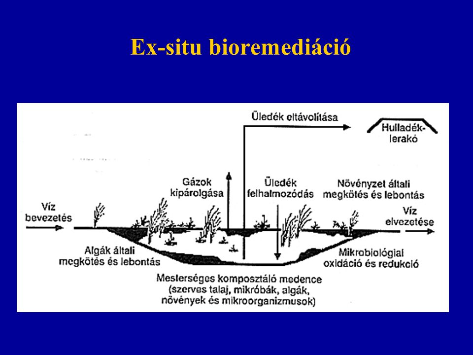 Ex-situ bioremediáció
