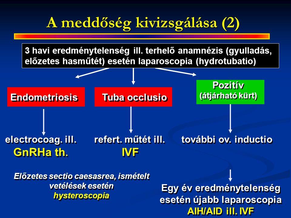 A meddőség kivizsgálása (2)